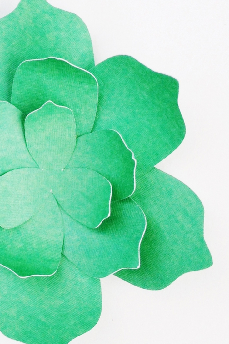 DIY Paper Succulents - Maritza Lisa: Want to create your own paper succulents? Use these free PDF and cut file to create your own. Click through for the tutorial...Silhouette Cameo Project - Paper crafts - freebie - free cut file - free pdf file - paper flower - paper plant - tutorial