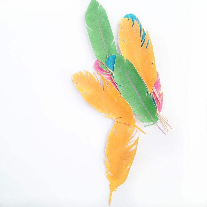 DIY Gifts and Packages - Decorate with these DIY feathers